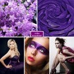 A lila árnyalatai